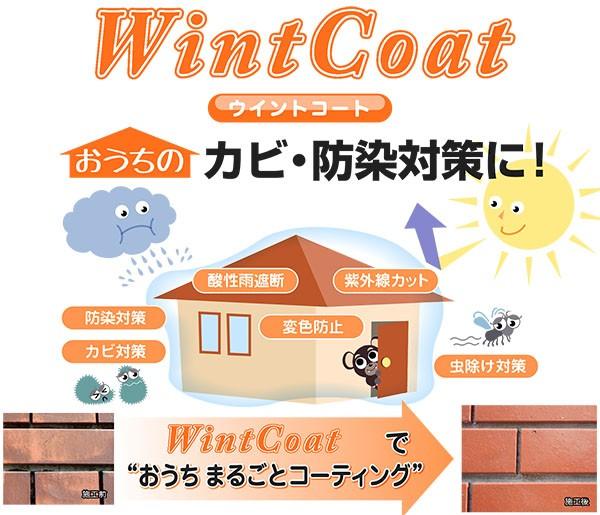 wintCoat